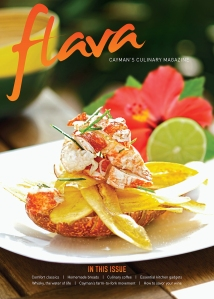 Flava 2014 Issue 1 Cover.indd