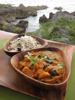 VIVO Authentic Indian Vegan Curry 2 (2)