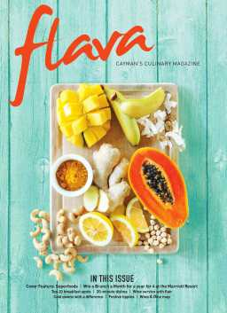 Flava 2016 front cover